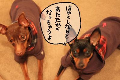 2011_04_05_7087.jpg