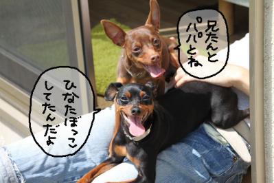 2011_04_16_7496.jpg