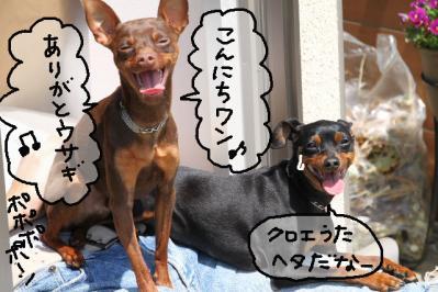 2011_04_16_7498.jpg