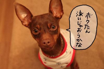 2011_04_23_7644.jpg