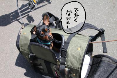2011_04_24_7689.jpg