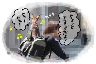 2011_04_24_7698.jpg