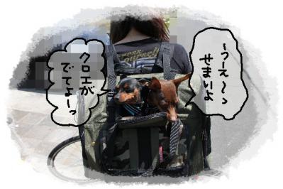 2011_04_24_7706.jpg