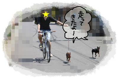 2011_04_24_7751.jpg