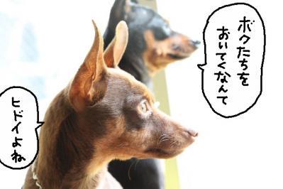 2011_05_06_7864.jpg