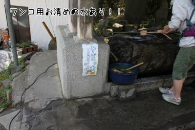 2011_05_14_8069.jpg