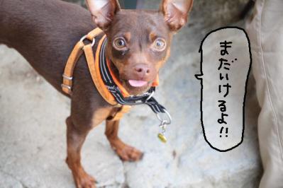 2011_05_14_8081.jpg