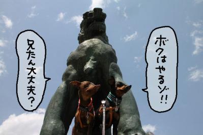 2011_05_14_8087.jpg