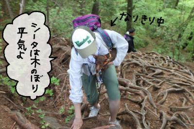 2011_05_14_8145.jpg