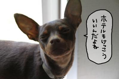 2011_05_19_8254.jpg