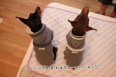 2011_05_22_8365.jpg
