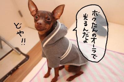 2011_05_22_8401.jpg