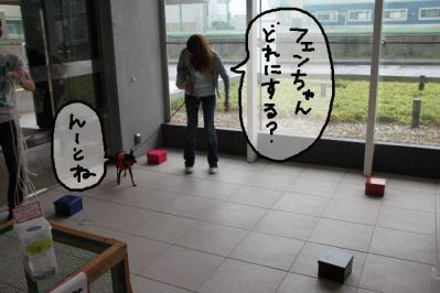 2011_05_29_8437.jpg
