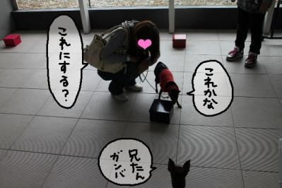2011_05_29_8441.jpg