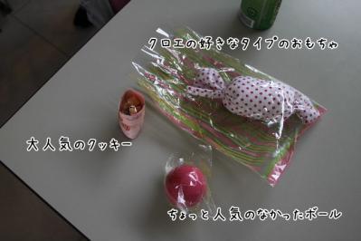 2011_05_29_8443.jpg