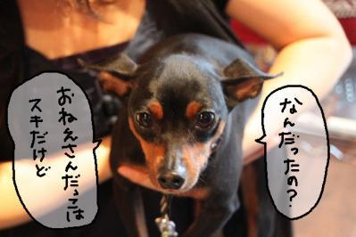 2011_05_29_8490.jpg