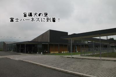 2011_06_12_8823.jpg