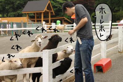 2011_06_12_8938.jpg
