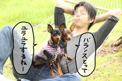 2011_06_12_8981.jpg