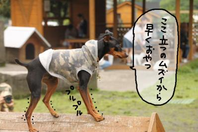 2011_06_12_9064.jpg