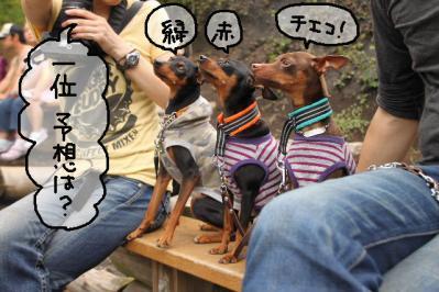 2011_06_12_9097.jpg