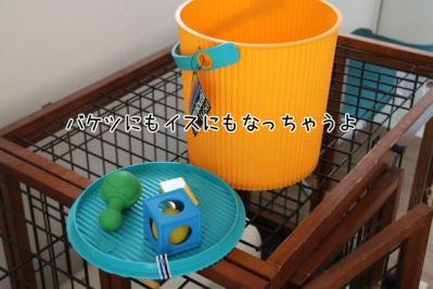 2011_06_19_9249.jpg