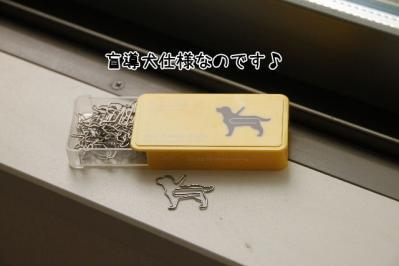 2011_06_19_9273.jpg