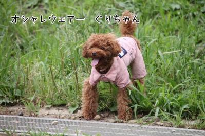 2011_06_25_9309.jpg