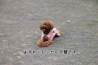 2011_06_25_9322.jpg