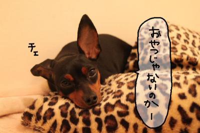 2011_07_09_9493.jpg