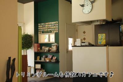 2011_07_10_9542.jpg