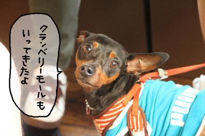 2011_07_10_9546.jpg