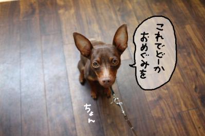 2011_07_10_9580.jpg