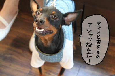 2011_07_10_9622.jpg