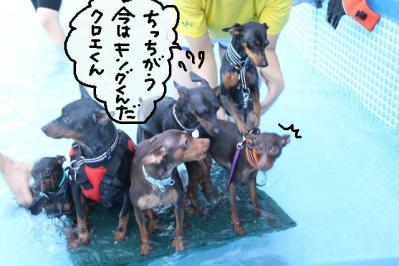 2011_07_10_9701.jpg