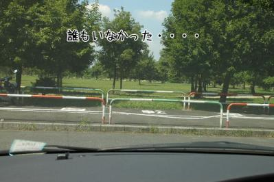 2011_07_14_9816.jpg