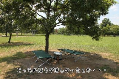 2011_07_14_9826.jpg