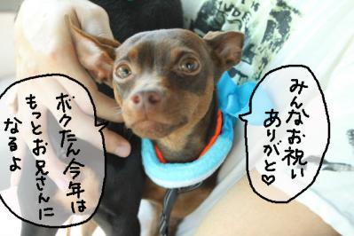 2011_07_16_9920.jpg
