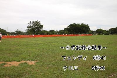 2011_07_18_9995.jpg