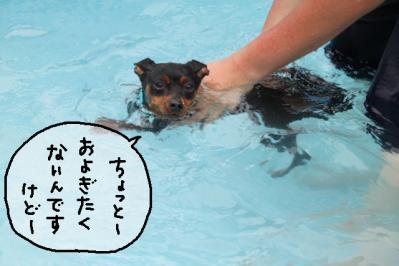 2011_07_18_9999_16.jpg