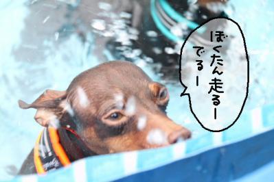 2011_07_18_9999_28.jpg