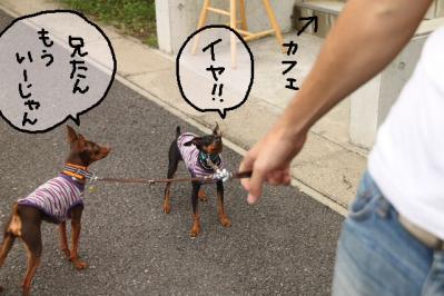 2011_08_02_9999_33.jpg