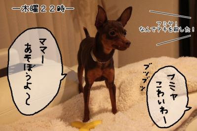 2011_09_07_9999_15.jpg