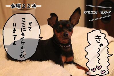 2011_09_07_9999_2.jpg