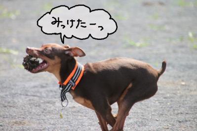 2011_09_11_9999_128.jpg
