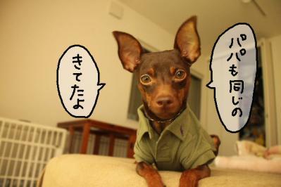 2011_09_29_9999_17.jpg
