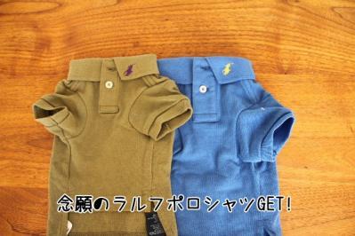 2011_09_29_9999_5.jpg