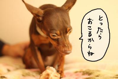 2011_10_02_9999_40.jpg