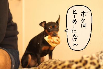 2011_10_02_9999_43.jpg