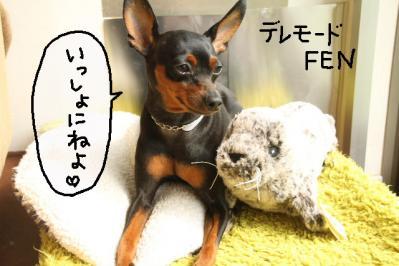 2011_10_08_9999_120.jpg